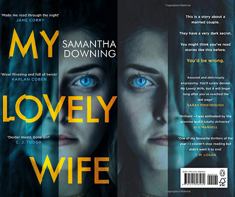 My Lovely Wife Book Overview