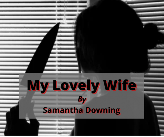 Questions About My Lovely Wife Book