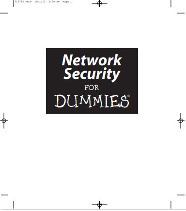 Network Security For Dummies Pdf eBook