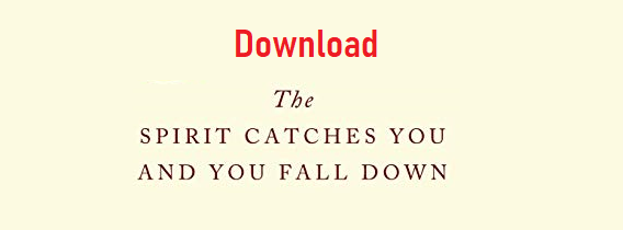 Download The Spirit Catches You and You Fall Down Pdf